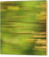 Rectangulism - S01a Wood Print