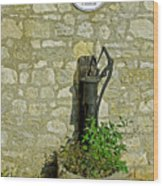 Rectory Mansion And Hand Pump - Brading Wood Print