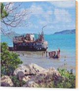 Recycled In Grenada Wood Print