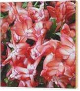 Red Abundance Wood Print