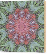 Red Amaryllis Trio Kaleidoscope Wood Print
