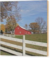 Red Amish Barn Wood Print by Donna Bosela