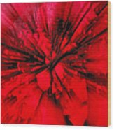 Red And Black Explosion Wood Print