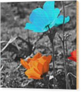 Red And Blue Flowers On Gray Background Wood Print