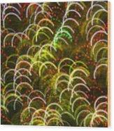 Red And Green Half Circle Lights Abstract Wood Print