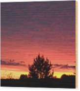 Red And Orange June Dawn Sky Wood Print