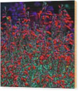 Red And Purple Flowers Wood Print