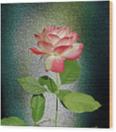 Red And White Rose5 Cutout Wood Print