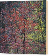 Red And Yellow Leaves Abstract Vertical Number 1 Wood Print