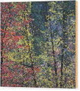 Red And Yellow Leaves Abstract Vertical Number 2 Wood Print