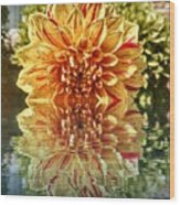 Red And Yellow Reflection Wood Print