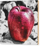 Red Apple Wood Print by Karen M Scovill