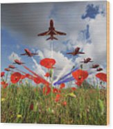 Red Arrows Poppy Fly Past Wood Print