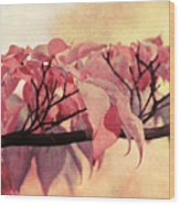 Red Autumn Day Wood Print