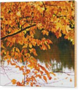 Red Autumn Leaves 2 Wood Print