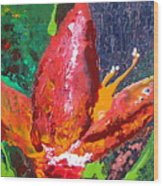 Red Banana Bloom Wood Print