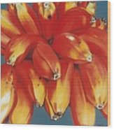 Red Bananas Of Jocotepec Wood Print