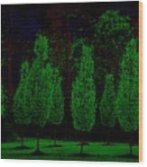 Red Bark Wood Print