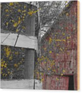 Red Barn And Forsythia Wood Print