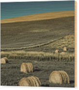 Red Barn At Haying Time Wood Print