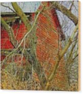 Red Barn Behind The Trees Wood Print