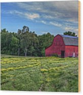 Red Barn In A Yellow Field  Wood Print