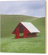 Red Barn In Spring Wood Print