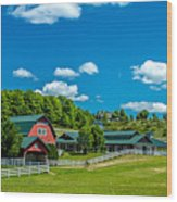 Red Barn On Hoyt Road Wood Print