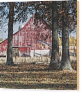 Red Barn Through The Trees Wood Print by Pamela Baker