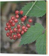 Red Bead Wood Print