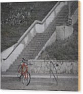 Red Bicycle Wood Print by Kevin Bergen