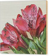 Red Blooms Poster Art Wood Print