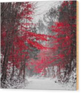 Red Blossoms  Wood Print