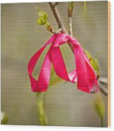 Red Bow In A Tree Wood Print
