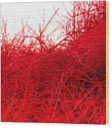Red Expression Wood Print
