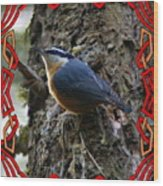 Red Breasted Nuthatch 2 Wood Print