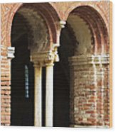 Red Brick Arches Regular Wood Print