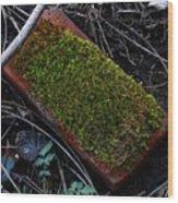 Red Brick Wood Print
