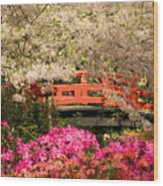 Red Bridge And Blossoms Wood Print