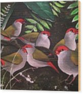 Red-browed Finch Flock Weipa Wood Print