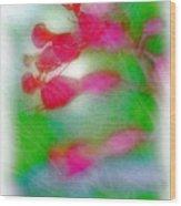 Red Buckeye Wood Print