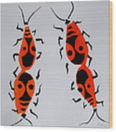 Red Bugs Wood Print