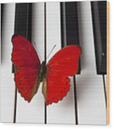 Red Butterfly On Piano Keys Wood Print by Garry Gay