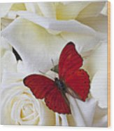 Red Butterfly On White Roses Wood Print by Garry Gay
