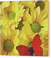 Red Butterfly On Yellow Mums Wood Print