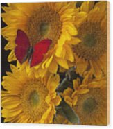 Red Butterfly With Four Sunflowers Wood Print