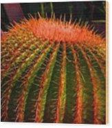 Red Cactus Wood Print