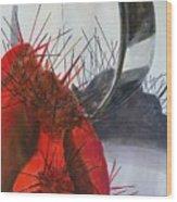 Red Cactus Shadows Wood Print