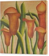 Red Callas Wood Print