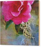 Red Camellia Wood Print